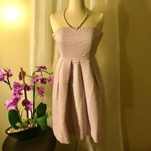 J.Crew Lilac Strapless Dress